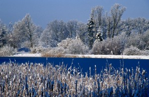 Winter-in-Meezen (1)